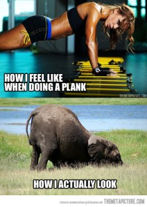 funny-girl-doing-planks-elephant